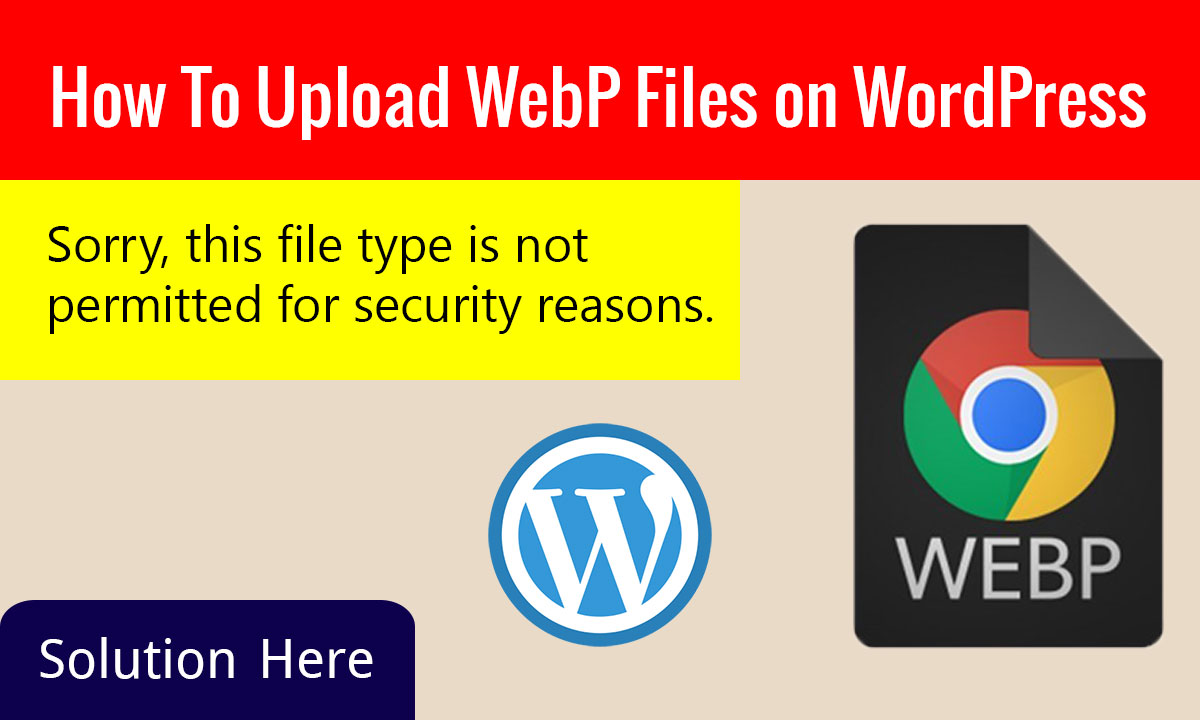 WebP Files